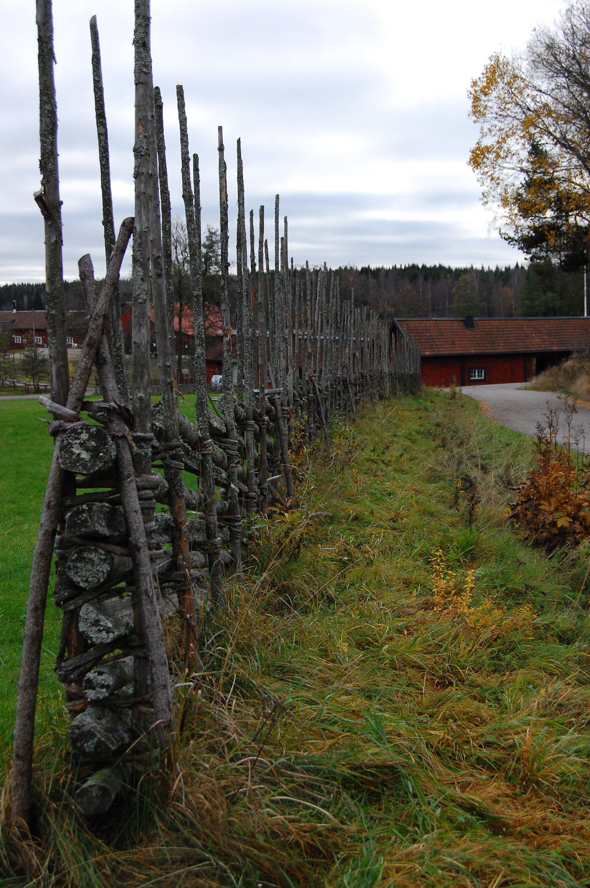 stockholm_hike_farmland4